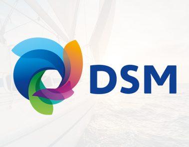 DSM klant Navigator Consult